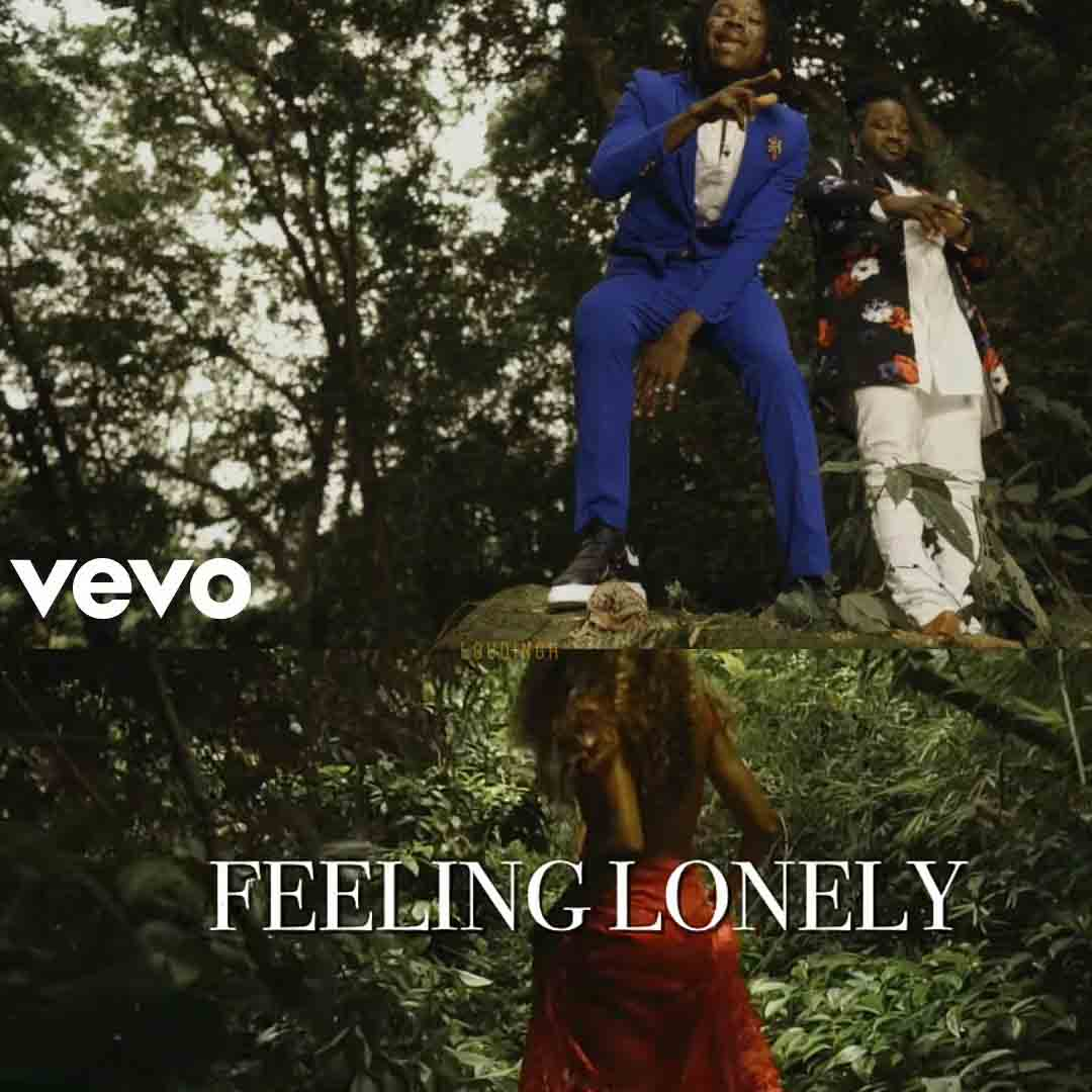 Stonebwoy - Feeling Lonely ft. I-Octane (Official Video)